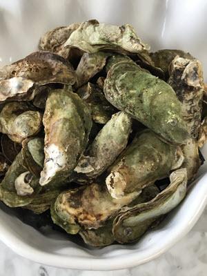 Fresh Osprey Oysters from Prince Edward Island Canada